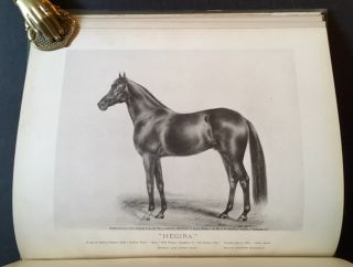 "History in Brief of ""Leopard"" and ""Linden"", General Grant's Arabian Stallions, Presented to Him..."